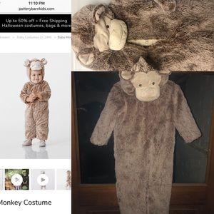 Pottery Barn monkey Halloween costume